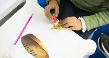 Pisa Book Junior