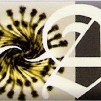 angelica_logo